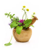 Mortar and pestle with fresh herbs — Stock Photo