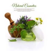 Wooden mortar and cosmetic cream jar with herbs inside — Stock Photo