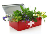 Fresh herbs in first aid kit — Foto de Stock