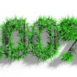 Wooden  text with green grass growth isolated — Stock fotografie #44794261