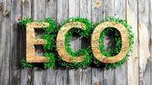 Palabra de madera eco con el crecimiento de la vegetación sobre fondo de madera — Foto de Stock