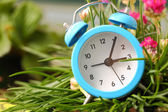 Classic alarm clock with pink flowers and grass — Stockfoto