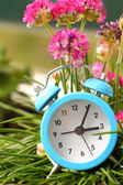 Classic alarm clock with pink flowers and grass  — Foto de Stock