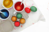 Colored Easter eggs and liquid color dyes on white background — Stock Photo