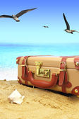 Closed suitcase on tropical beach with birds — Stok fotoğraf