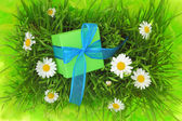 Gift box with ribbon on grass with daisy flowers — Zdjęcie stockowe