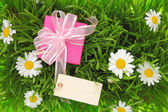 Gift box with blank tag on grassy background — Stockfoto