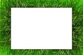 Blank white horizontal banner on green grass — Stock Photo