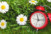 Red clock on green grass with flowers background  — Stock Photo