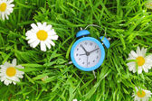 Blue clock on green grass with flowers background  — Stock Photo