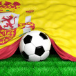 Soccer ball with Spanish flag on football field closeup — Stock Photo #47885993