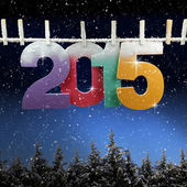 Number 2015 hanging on a clothesline over snow covered trees — Stock Photo