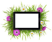 Tablet with blank white screen surrounded by flora — Stock Photo