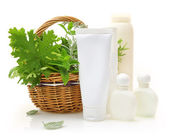 Fresh herbs in wicker basket and cosmetic packaging — Stock Photo