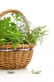 Fresh herbs in a wicker basket — Stock Photo