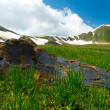 Mountains covered with snow, big stone, green meadow — Stock Photo #29838679