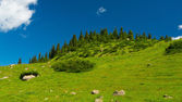 Hills, meadows and a green grass in Altyn-Arashan, Kyrgyzstan — Stock Photo