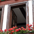 Stock Photo: Flowers, window, house, framework, Germany