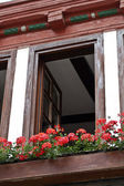 Flowers, window, house, framework, Germany — Stock Photo