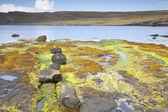 Tulm Bay; Isle of Skye — Stock Photo