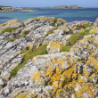 Rock on Shoreline, Iona, Scotland — Stock Photo