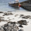 Harbor at Iona — Stock Photo #16665457