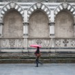 Stock Photo: Santa Maria Novella Church, Florence, Italy with Woman Walking
