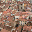 Stock Photo: Roofs of Florence