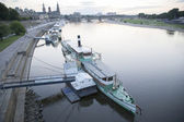 Steamboats on the River Elbe in Dresden — Stok fotoğraf