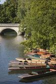 川 carn、ケンブリッジのパント船 — ストック写真