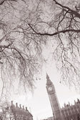 Big Ben and the Houses of Parliament, Westminster, London — Foto Stock