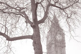 Big Ben and the Houses of Parliament, Westminster, London — 图库照片