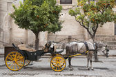 Cathedral, Seville - Sevilla with Horse and Carriage, Spain — Stockfoto