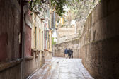 Callejon de Aguas Street, Santa Cruz Neighborhood, Seville — Stock Photo