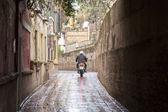 Callejon de Aguas Street, Santa Cruz Neighborhood, Seville — Stock Photo