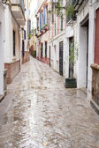 Typical Street in Santa Cruz Neighborhood, Seville — 图库照片