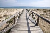 Beach at El Palmar, Cadiz, Andalusia, Spain — Stock Photo