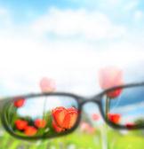 読書眼鏡と美しい自然の風景。視力ケアの概念 — ストック写真