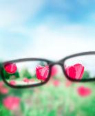 Lettura occhiali da vista e vista splendida natura. concetto di cura vista — Foto Stock