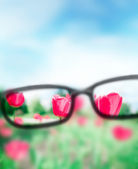 Reading eyeglasses and beautiful nature view. Sight care concept — Foto Stock