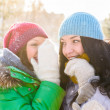 Two happy young girls having fun in winter park and chatting — Stock Photo #13623293