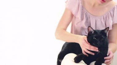 Girl stroking a cat — Stock Video