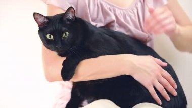 Woman cuddling a cat — Stock Video