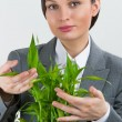 Adult business woman holding lucky bamboo plant symbol of succes — Stock Photo