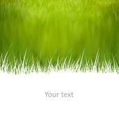 Yaratıcı doğal arka plan, metin için yer ile — Stok fotoğraf
