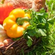 Stock Photo: Organic food background