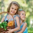 Two little girls holding basket of organic food — Stock Photo
