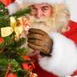Stock Photo: Real SantClaus decorating Christmas tree