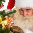 Real Santa Claus decorating Christmas tree — Stock Photo #31417883