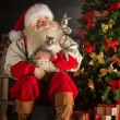 Santa Claus sitting near Christmas tree and embracing his cat — Stock Photo #32363535